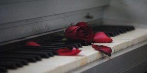 Rose Poem In Hindi